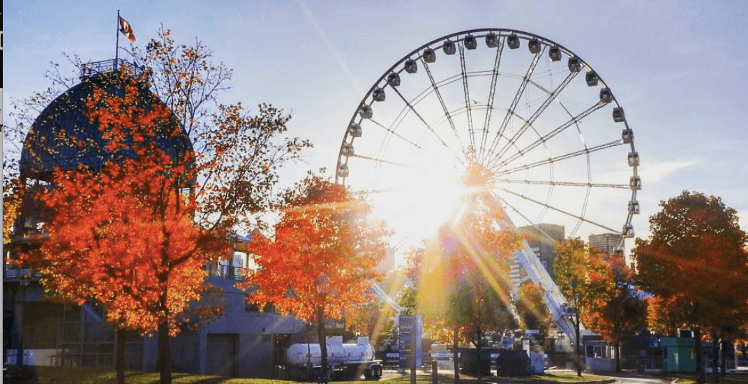 14 places to take the best fall photos in Montreal
