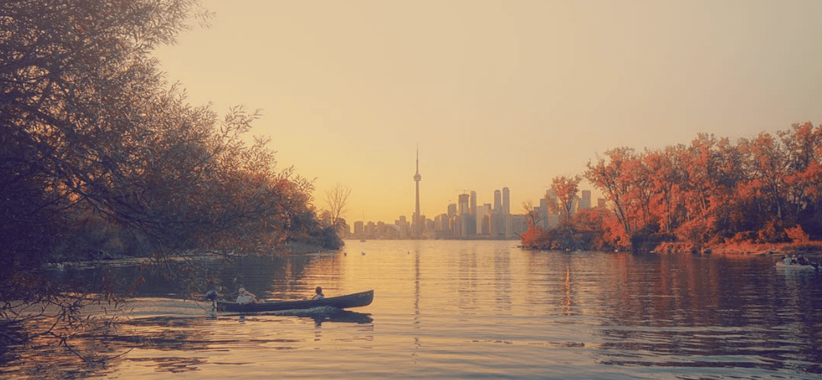 20 things to do in Toronto today: Saturday, November 4