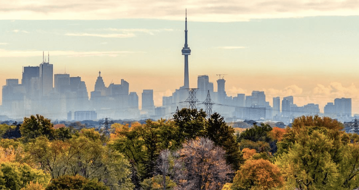 20 things to do in Toronto today: Sunday, November 5
