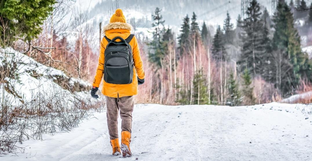 Winter hiker shevdinov1shutterstock