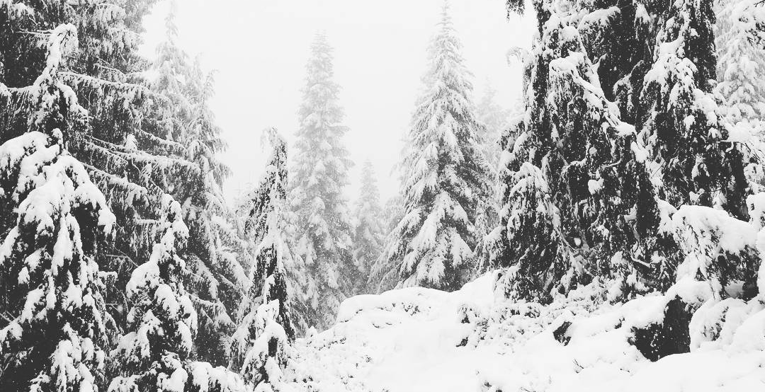 Grouse grind covered in snow metro vancouver twitter