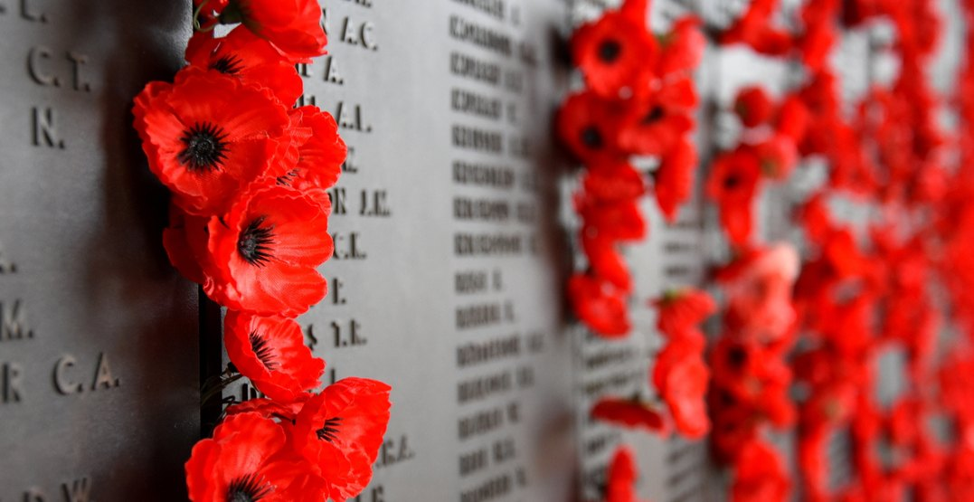 Poppies on remembrance day at a memorial for fallen soldiers shutterstock