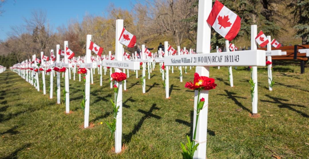 Rachel Notley names November 10 'Passchendaele Day' on battle's 100th anniversary