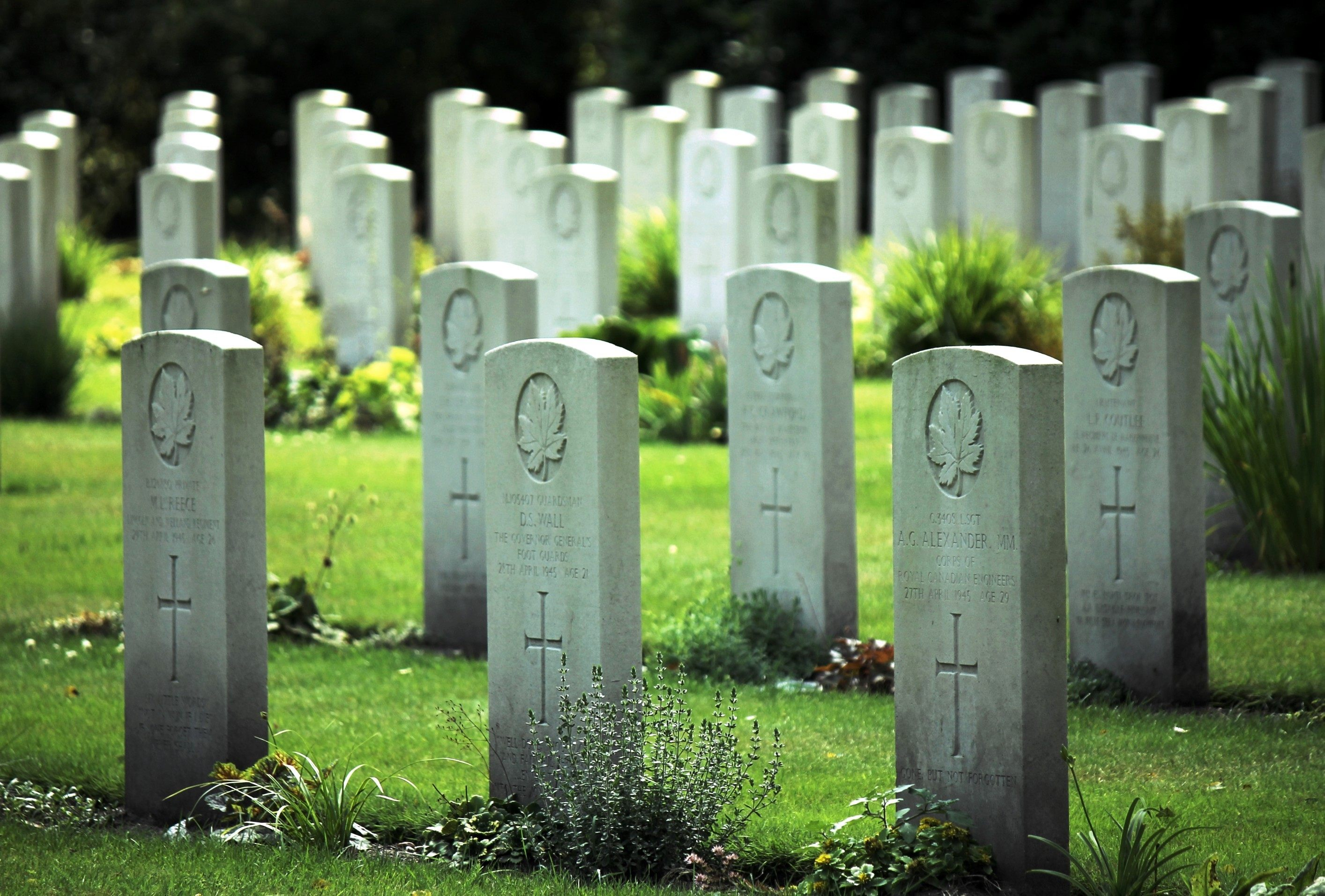 Gravestones of Canadian soldiers who fought in World War II at the Canadian War Cemetery in the Netherlands (Robin Nieuwenkamp/Shutterstock)