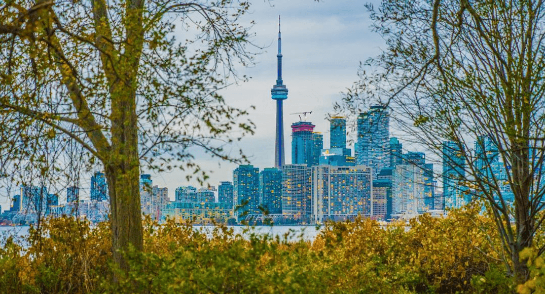 20 things to do in Toronto today: Saturday, November 18