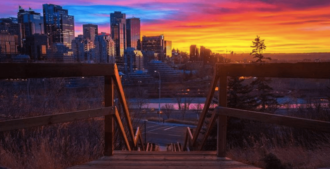 18 things to do in Calgary this weekend: November 17 to 19