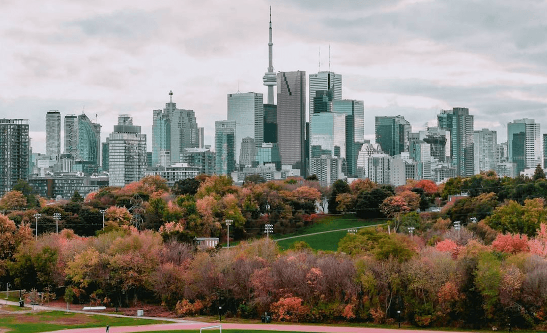 5 things to do in Toronto today: Monday, November 20