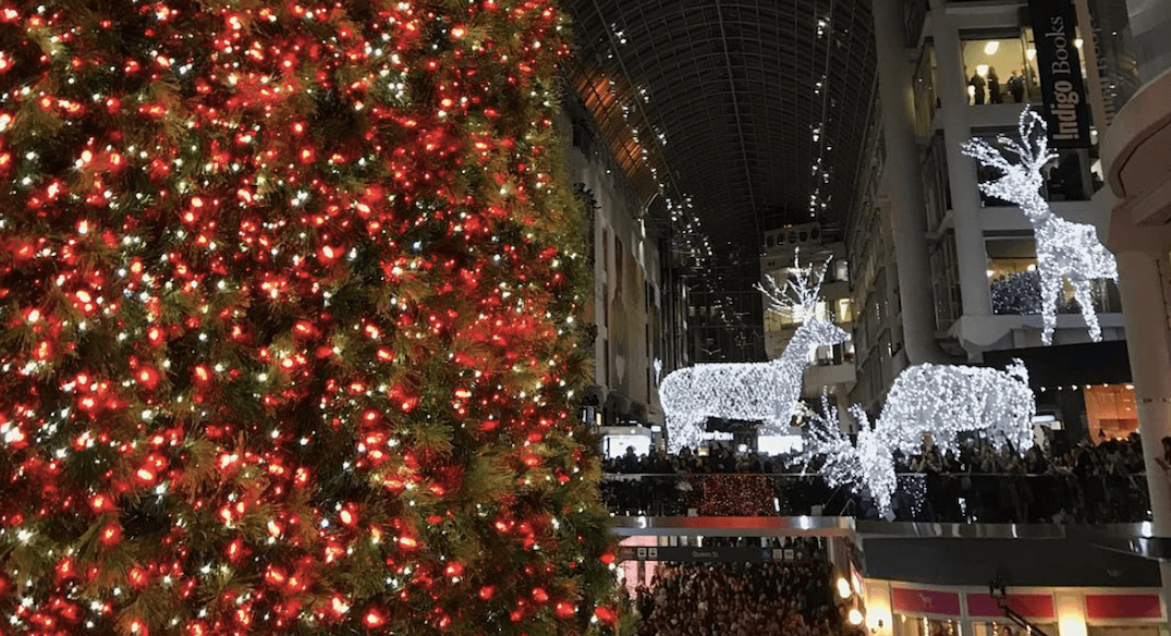 Toronto's 100-foot Christmas Tree Was Unveiled At The