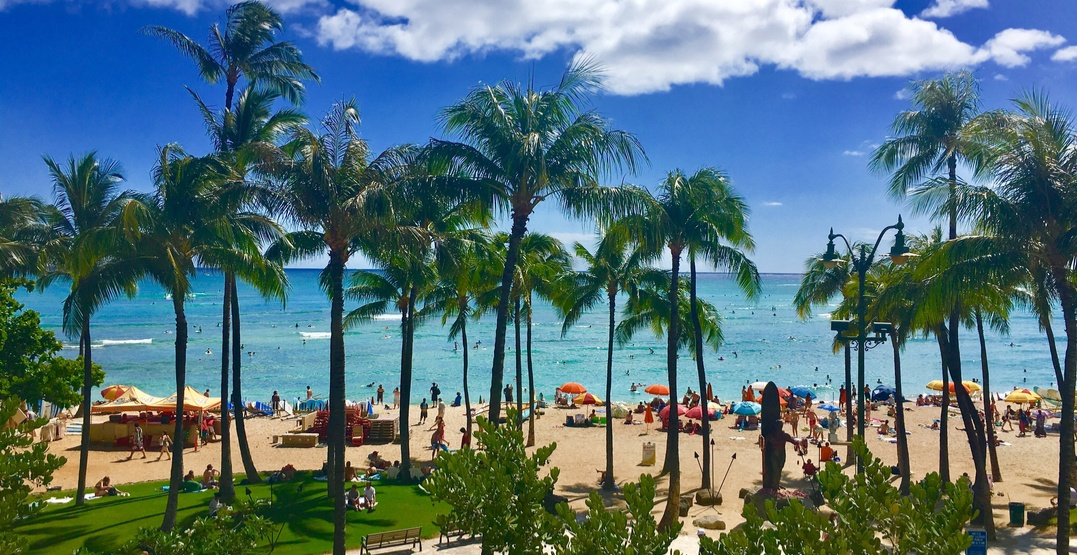 You can fly from Montreal to beautiful Hawaii for under $535 this winter