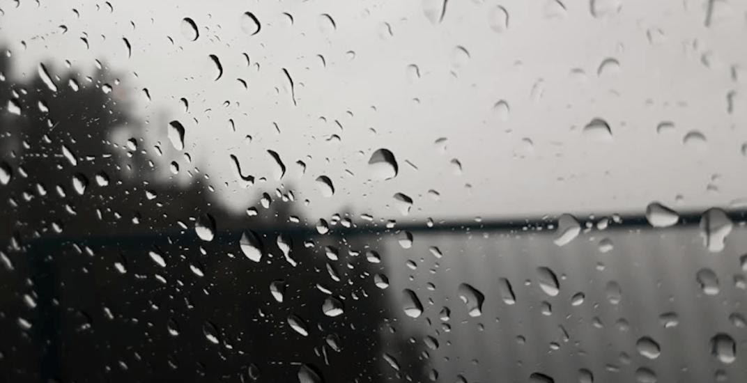 Metro Vancouver's forecast shows 7 straight days of rain