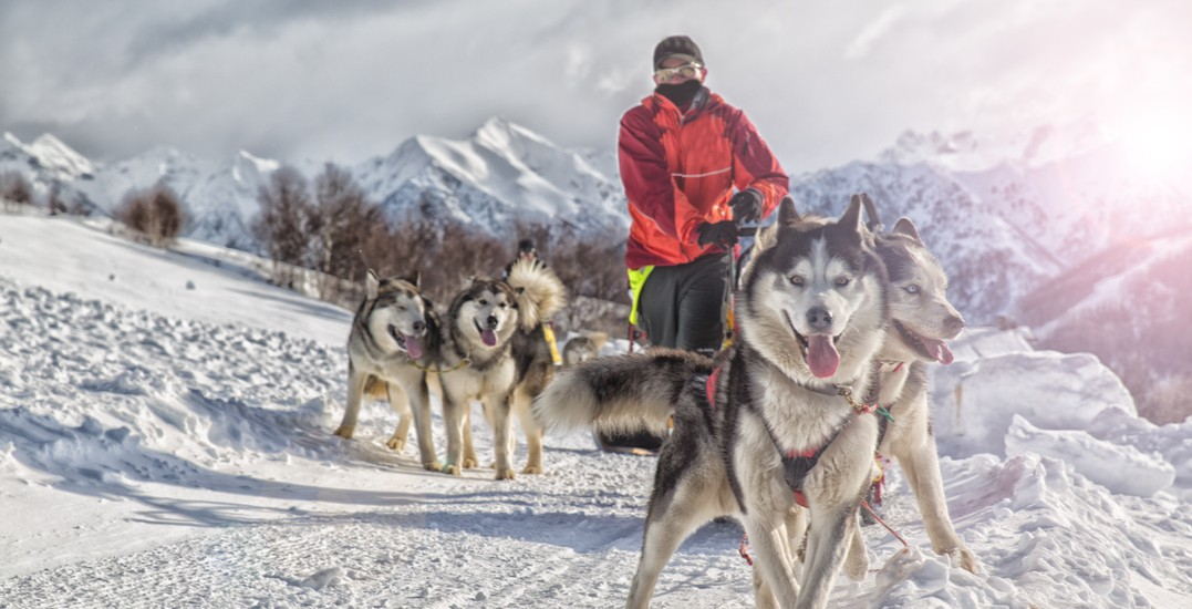 14 outdoor experiences to try in Ontario this winter