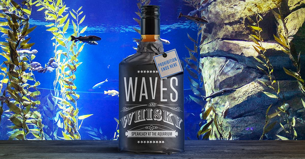 Waves & Whisky