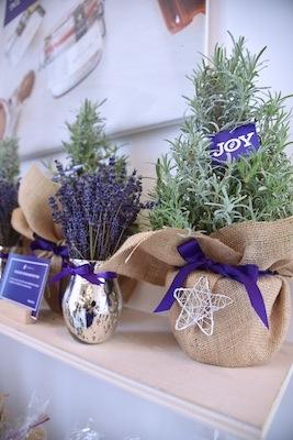 Terre Bleu sheep christmas sweaters lavender farm