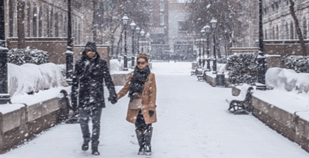 15 photos of Montreal's first major snowstorm of the season