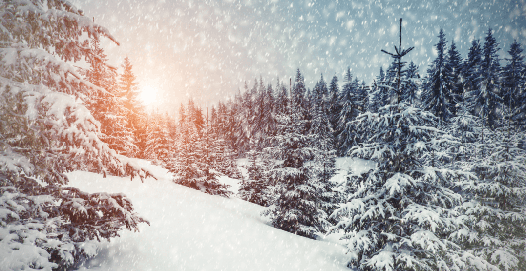 Weather Network predicting a white Christmas in Calgary this winter