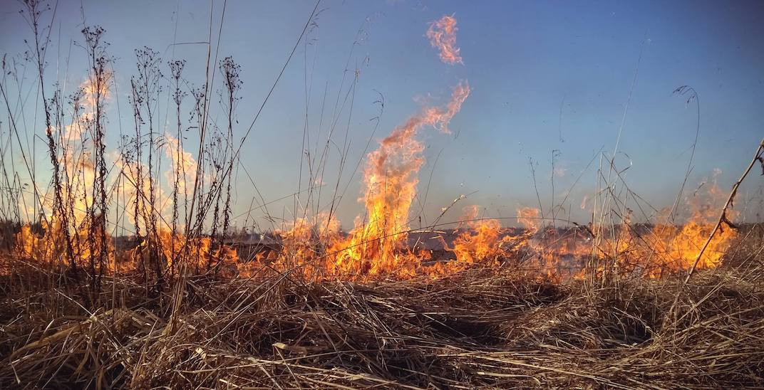 Dry December spells a fire ban for Wheatland County