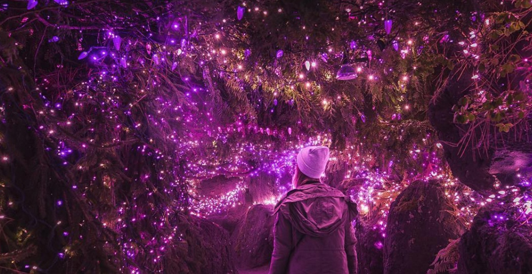 VanDusen Botanical Garden is covered in a million magical Christmas lights right now (PHOTOS)