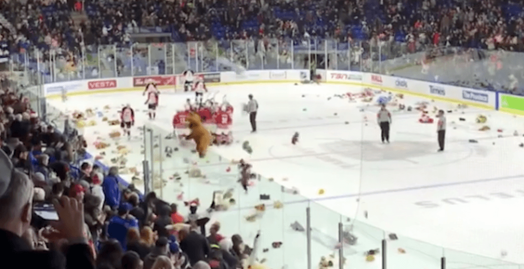Watch it rain teddy bears at the Vancouver Giants game (VIDEOS)