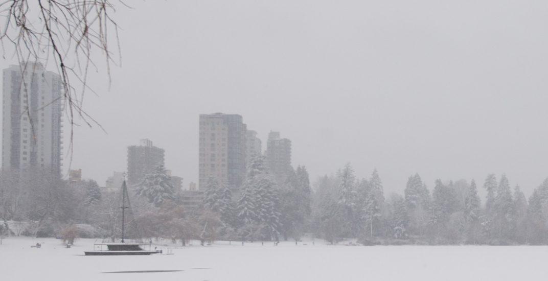 Snow99