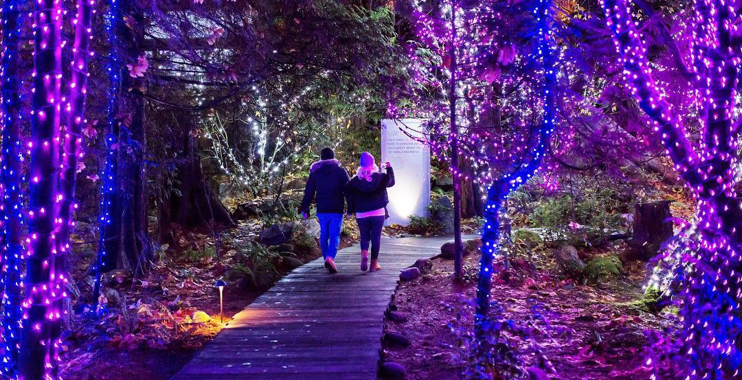 Christmas at vancouvers capilano canyon capilano suspension bridge