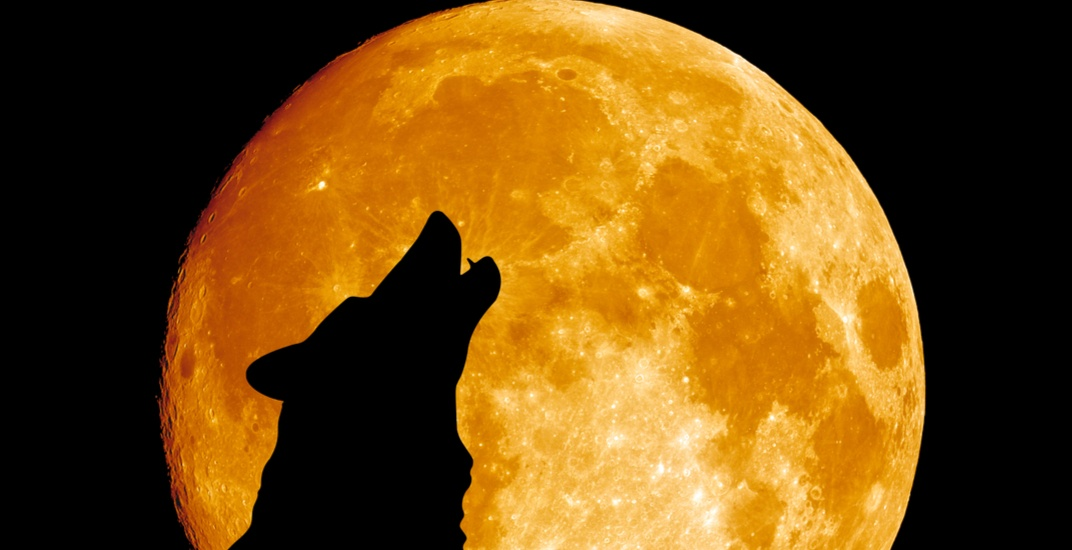 A massive Wolf Moon will light up the sky on the first night of 2018