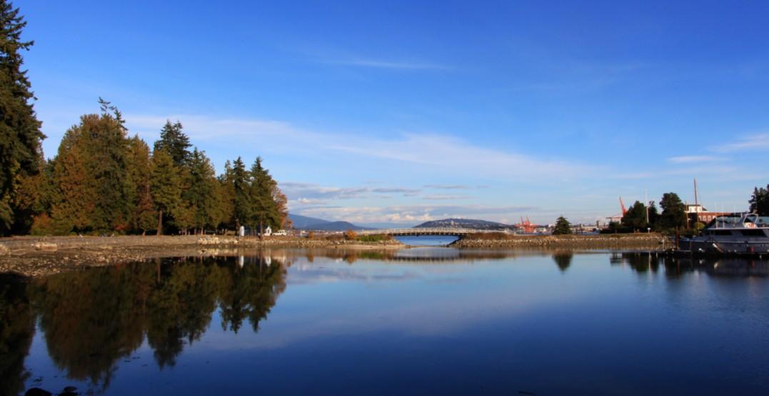 Vancouver skyline stanley park1