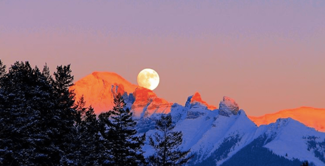 There was a massive Wolf Moon visible over Calgary last night (PHOTOS)