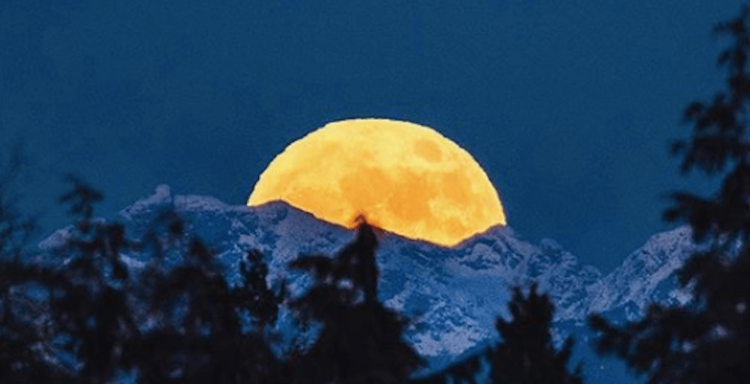 There was a massive Wolf Moon over Vancouver last night (PHOTOS)