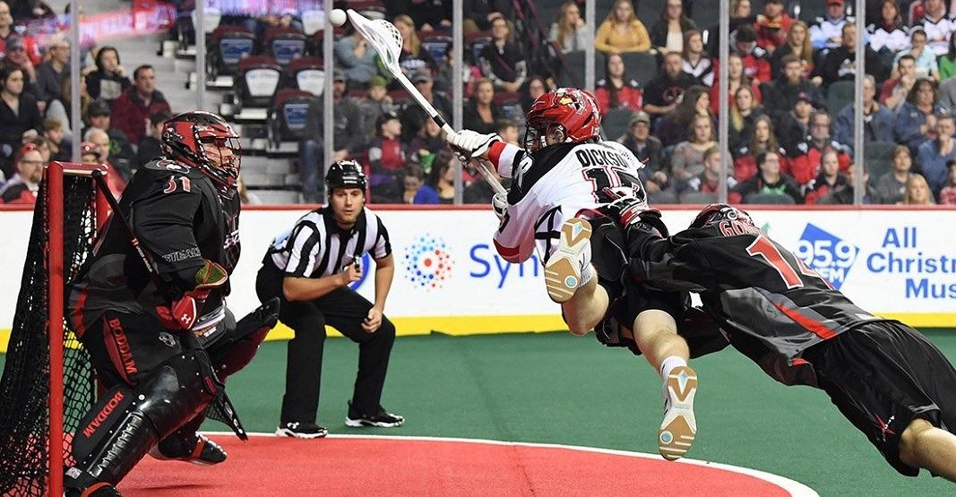 Lacrosse calgary roughnecks