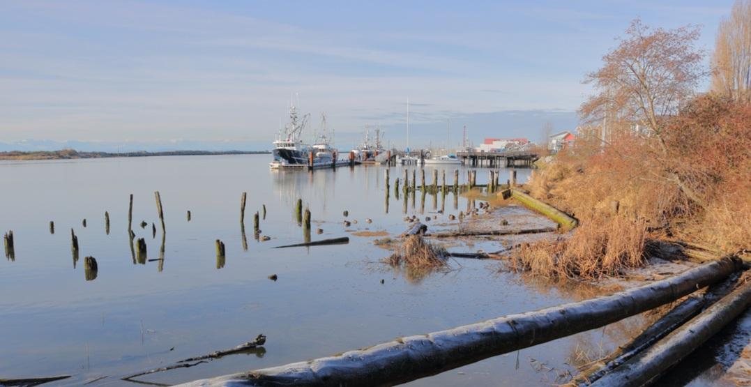 Richmond skyline marina ocean