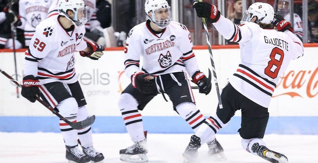 Canucks prospect Gaudette is leading the NCAA in scoring  9af7630a5