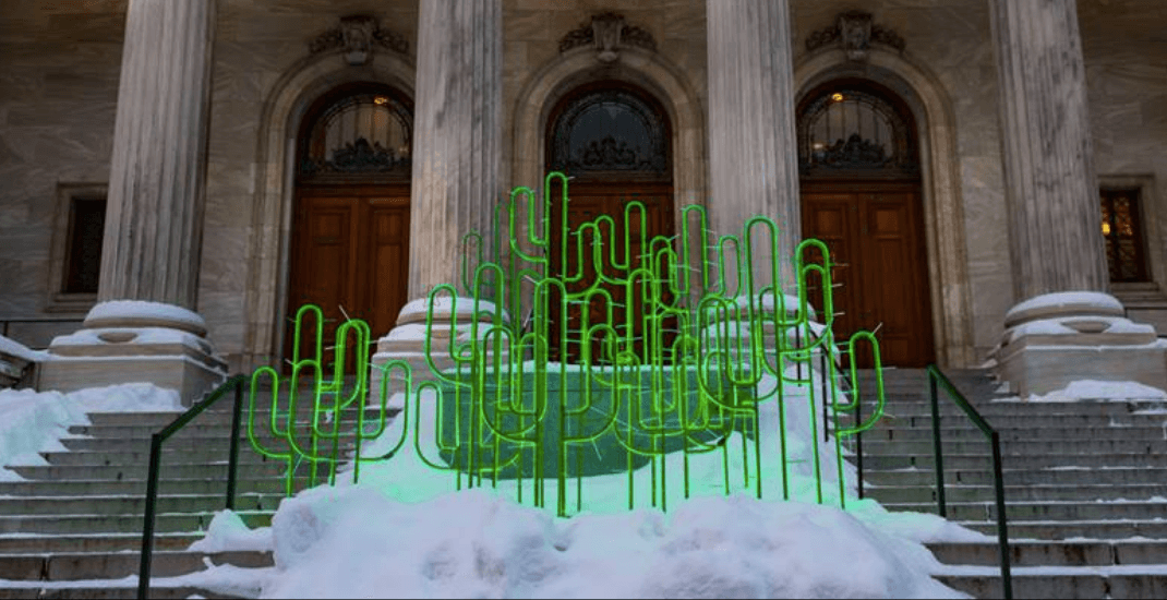 Giant cactuses are 'growing' out of snow in Montreal (PHOTOS)