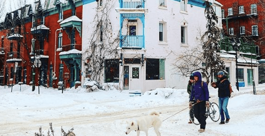 5 things to do in Montreal today: Thursday, January 11