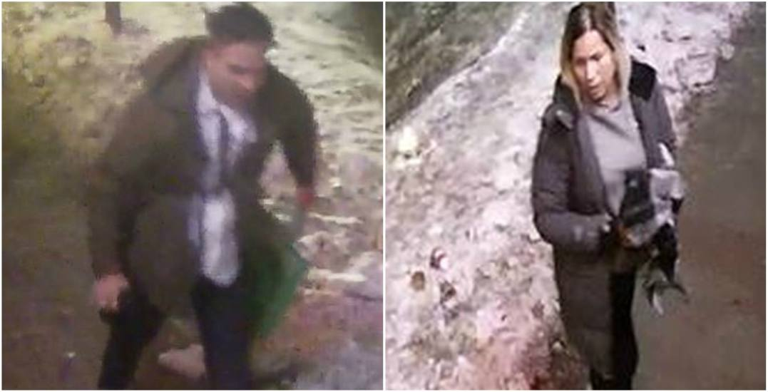 Main image theft and assault investigation