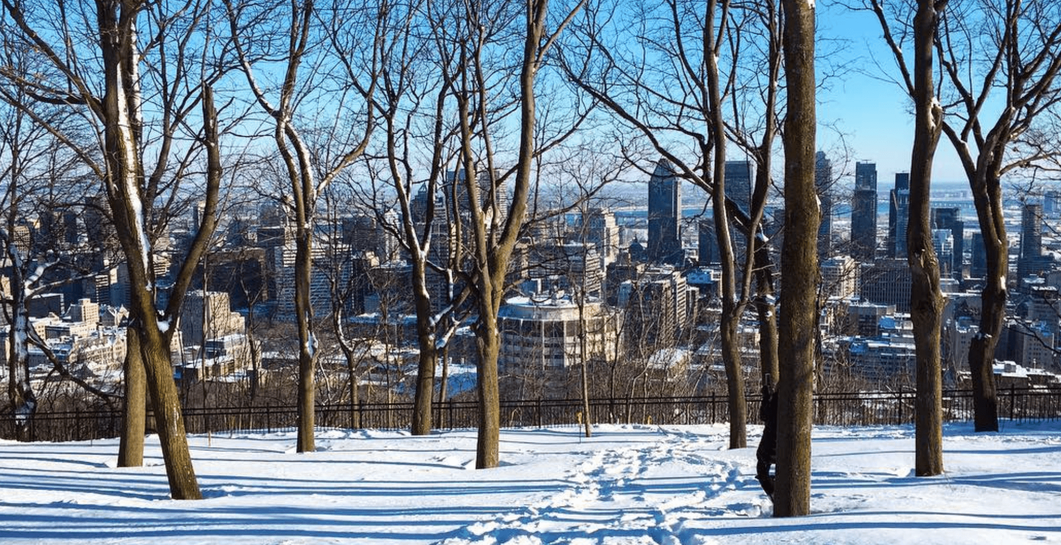 5 things to do in Montreal today: Thursday, January 25