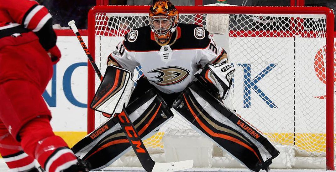 Ryan miller ducks