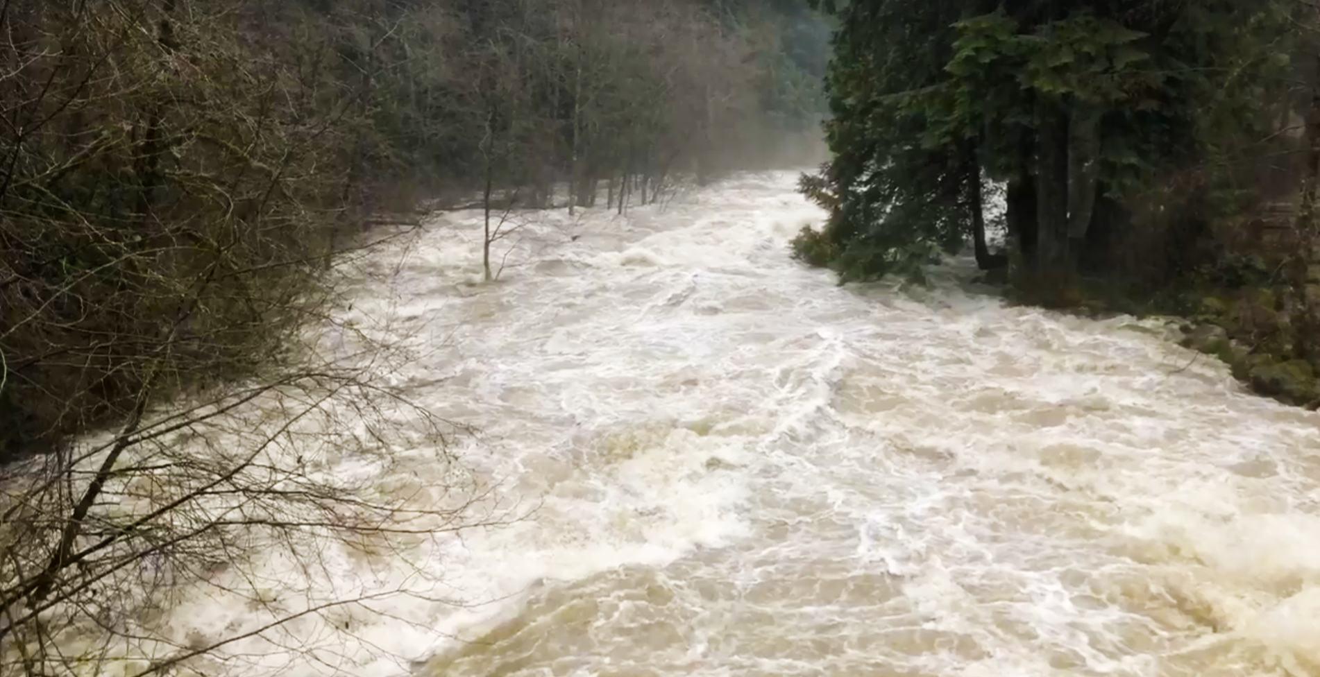 Lynn creek on vancouvers north shore north shore rescue