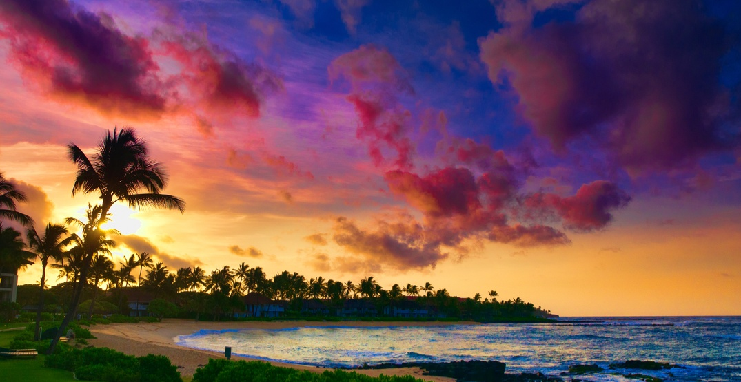 You can fly from Vancouver to Maui, Hawaii for $395 return