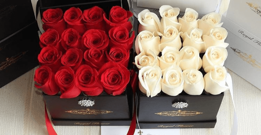 Forever Roses: These fancy flowers will stay fresh for an entire year