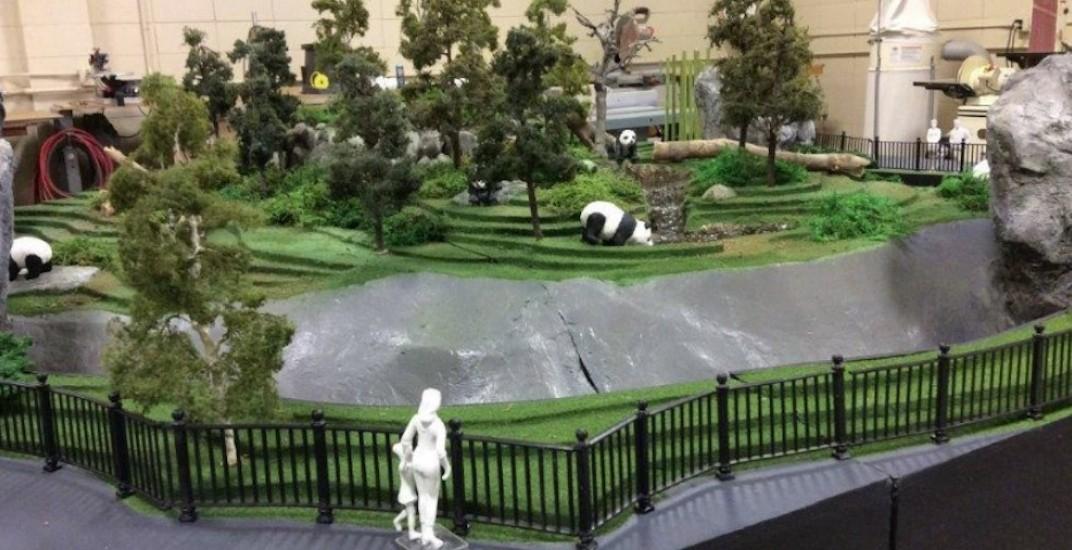 Giant panda exhibit at Calgary Zoo opens on May 7