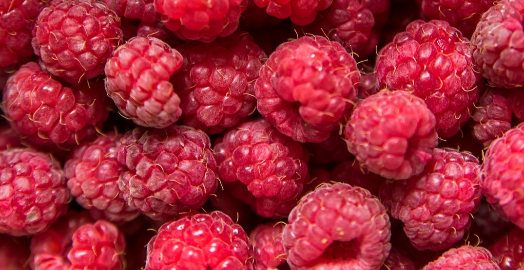 Norovirus-contaminated raspberries linked to hundreds of illnesses in Quebec