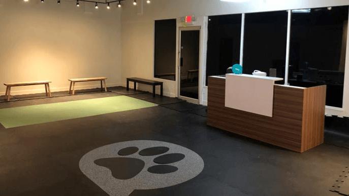 DogClub is open