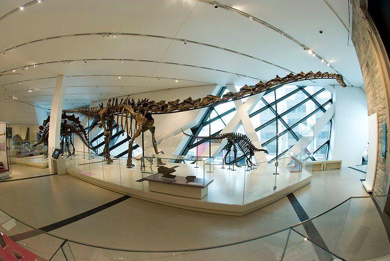 Royal Ontario Museum dinosaurs