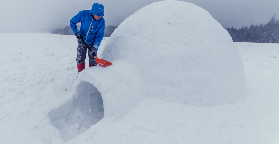 You can build an igloo and spend a night in it with this