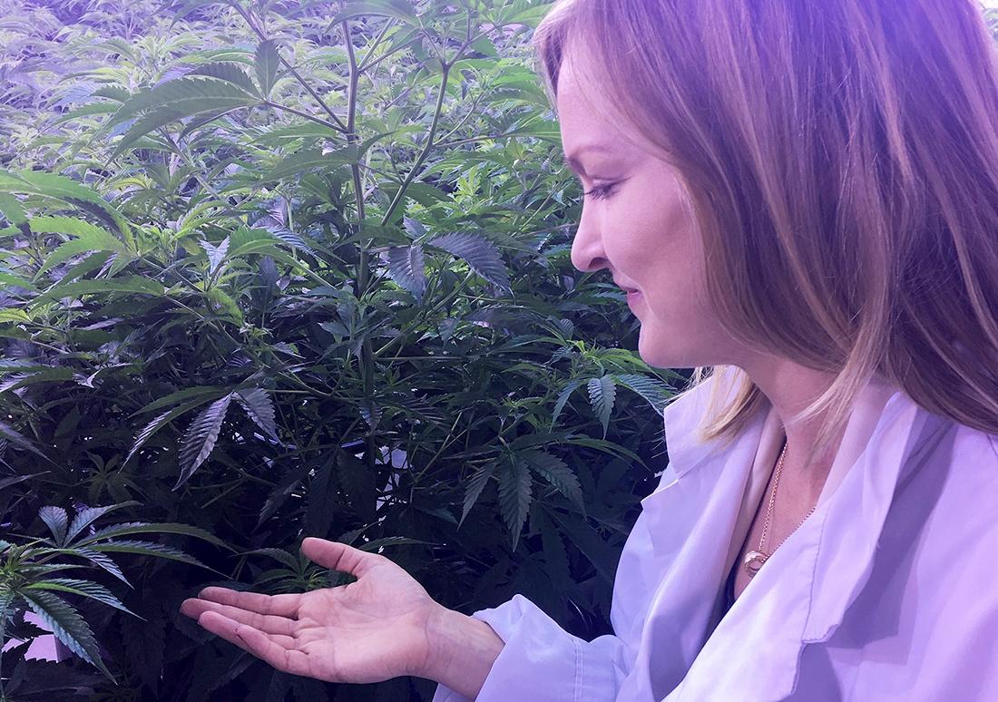 bethany rae cannabis