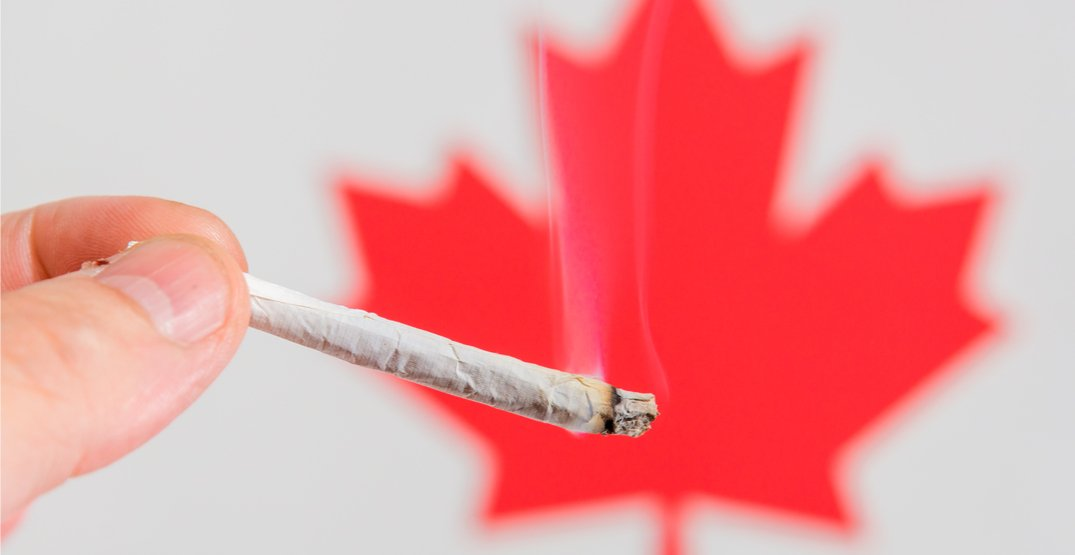 Senate committee asks for cannabis legalization to be delayed by one year
