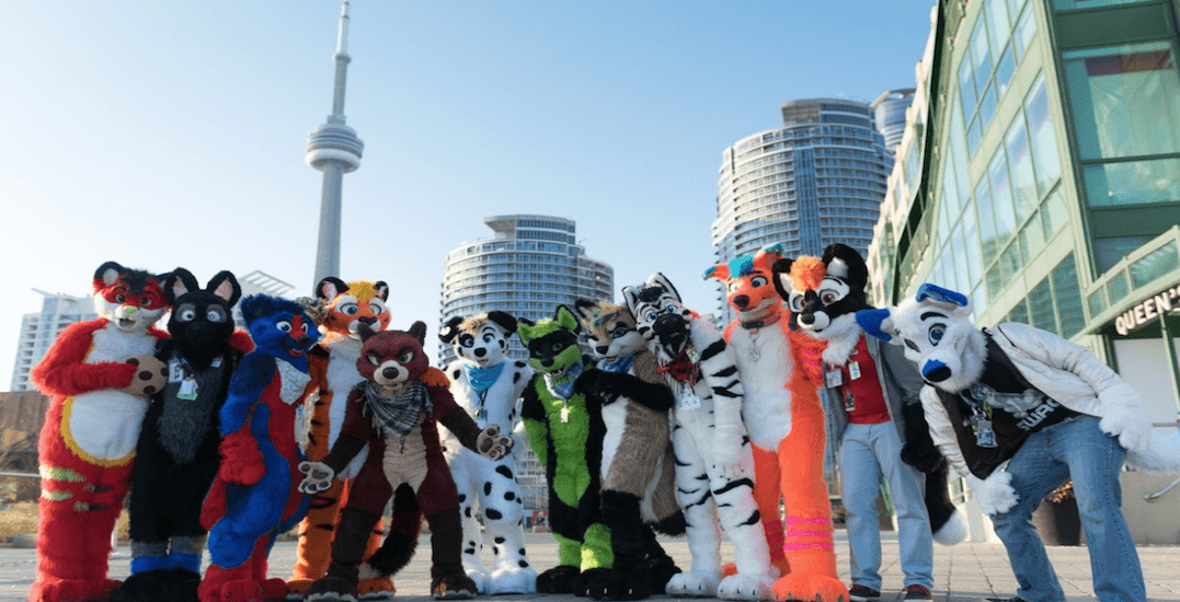 Toronto is about to be overrun with giant furry animals
