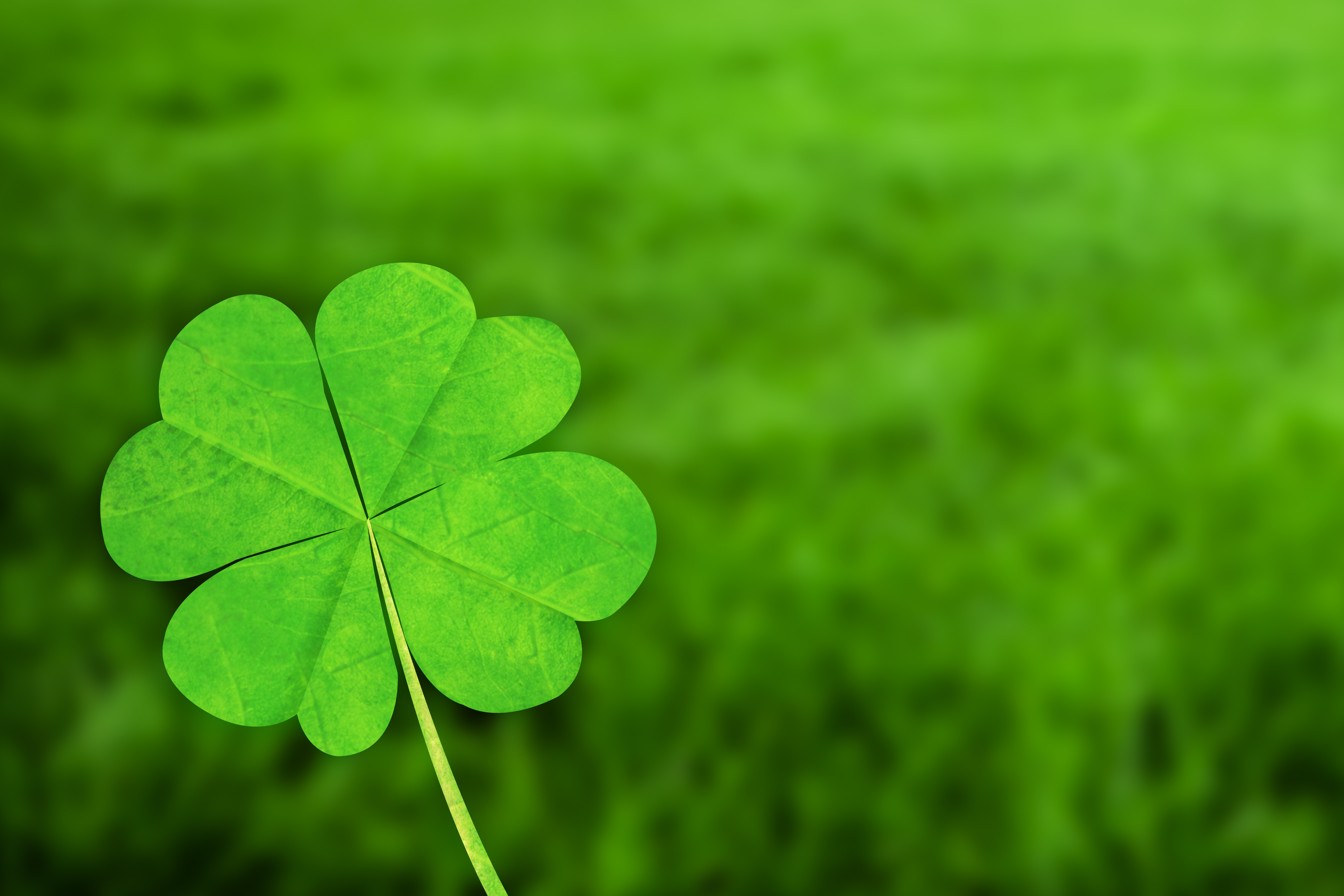 St.Patrick's day facts
