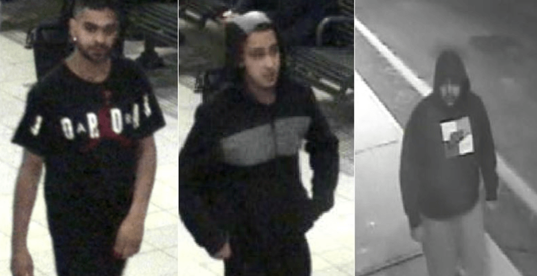 Police looking for men who viciously assaulted autistic male in Mississauga (VIDEO)