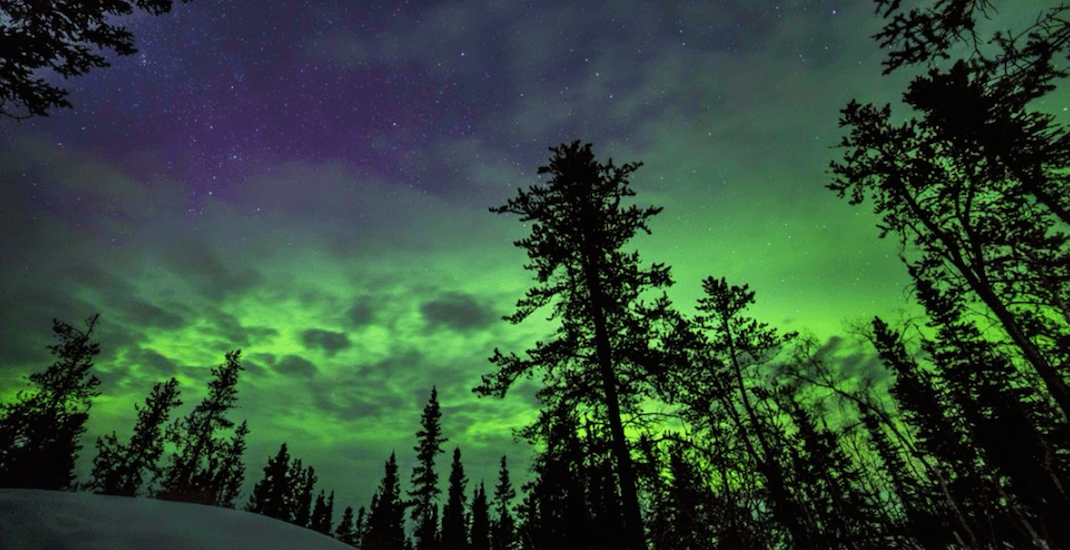 The Northern Lights could be visible above Canada this week